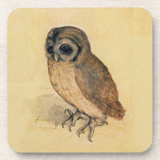 Albrecht Durer The Little Owl Drink Coaster