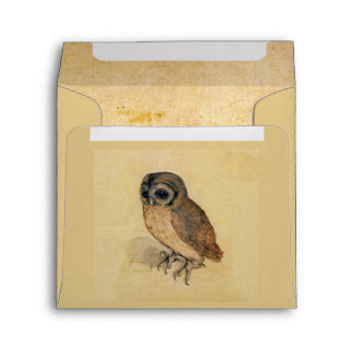 Albrecht Durer The Little Owl Envelope