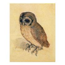 Albrecht Durer The Little Owl Flyer