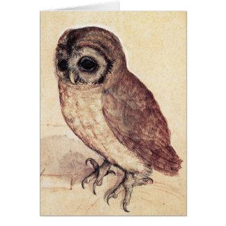 Albrecht Durer The Little Owl Greeting Card