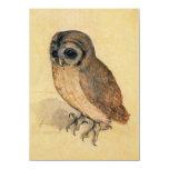 Albrecht Durer The Little Owl 4.5x6.25 Paper Invitation Card