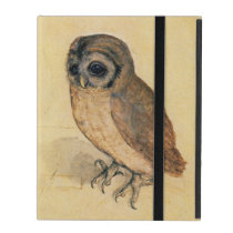 Albrecht Durer The Little Owl iPad Cover