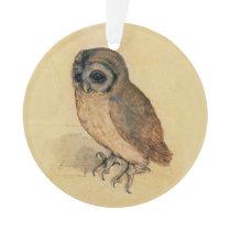 Albrecht Durer The Little Owl Ornament