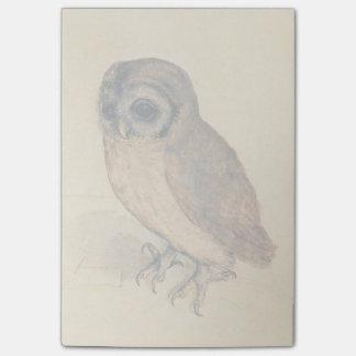 Albrecht Durer The Little Owl Post-it Notes