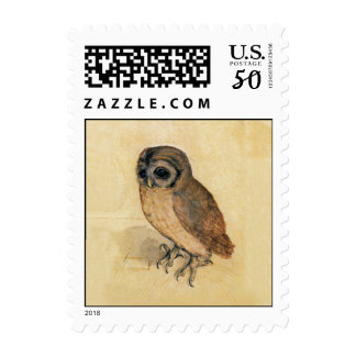Albrecht Durer The Little Owl Postage