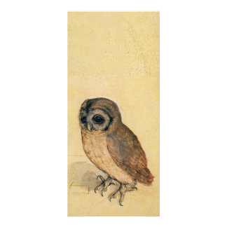 Albrecht Durer The Little Owl Rack Card Design