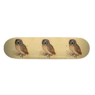 Albrecht Durer The Little Owl Skateboard