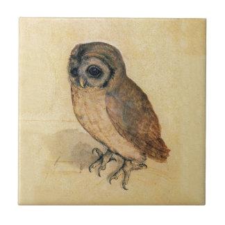 Albrecht Durer The Little Owl Tile