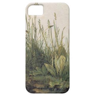 Albrecht Durer Turf iPhone 5 Cases