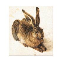 Albrecht Durer Young Hare Canvas Print
