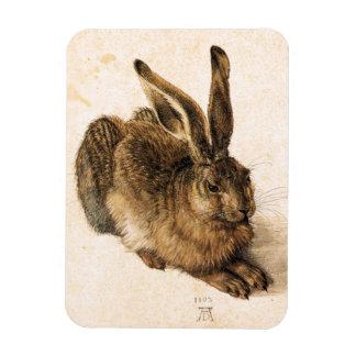 Albrecht Durer Young Hare Magnet