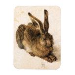Albrecht Durer Young Hare Rectangular Photo Magnet