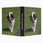 Álbum de foto del perro de St Bernard, carpeta, ca
