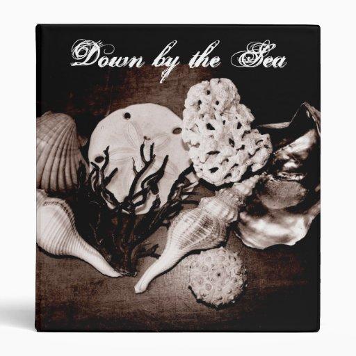 "Álbum de foto del Seashell Carpeta 1"""