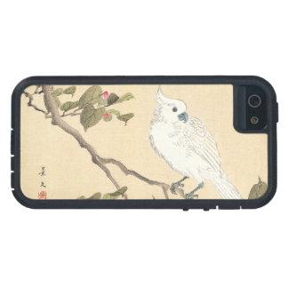 Álbum del pájaro y de la flor, Cockatoo y camelia Funda iPhone SE/5/5s