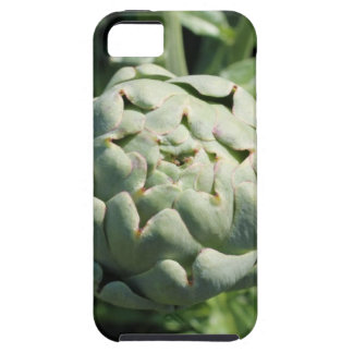 Alcachofa y hojas iPhone 5 coberturas