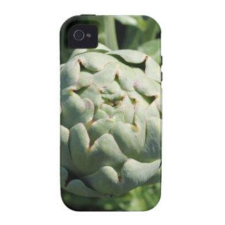 Alcachofa y hojas vibe iPhone 4 funda