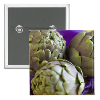 Alcachofas para el uso en los E.E.U.U. solamente.) Pin