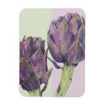 """Alcachofas púrpuras 3"""" imán superior de x4"""" Flexi"""