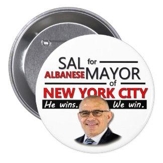 Alcalde 2013 de Albanese NYC de la sal Pin