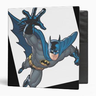 """Alcances de Batman adelante Carpeta 1 1/2"""""""
