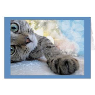 Alcanzar hacia fuera el gato lindo, mascota del tarjeta de felicitación