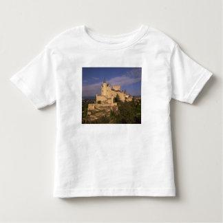 Alcazar and Cathedral, Segovia, Castile Leon, Shirt