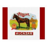 Alcazar el caballo de raza tarjeta postal