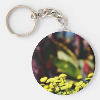 Alcazar Garden In Balboa Park Basic Round Button Keychain