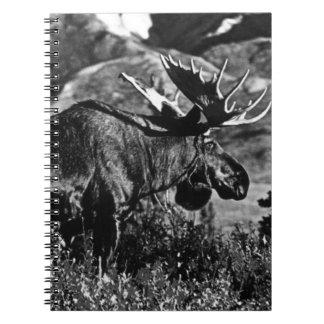 Alces 1970 del toro de los E.E.U.U. Alaska Libro De Apuntes Con Espiral