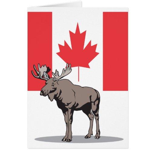 Alces Canadá Tarjeta De Felicitación