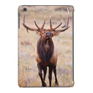 Alces (Cervus Elephus) Bull que reúne el Harem Funda De iPad Mini