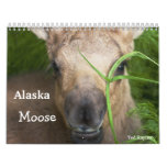 Alces de Alaska Calendarios