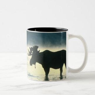 Alces de Bull del americano Taza De Café De Dos Colores