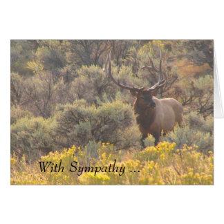 Alces de Bull del otoño con la tarjeta de encargo