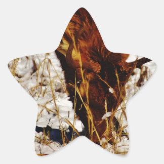 Alces de Bull Pegatina En Forma De Estrella