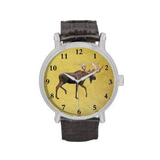 Alces de Bull Relojes