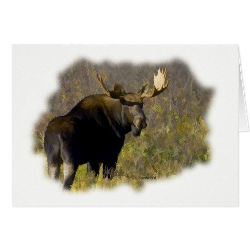Alces de Bull Tarjeta