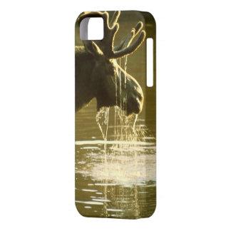 Alces de consumición - cubierta del iPhone 5 de la iPhone 5 Cárcasa