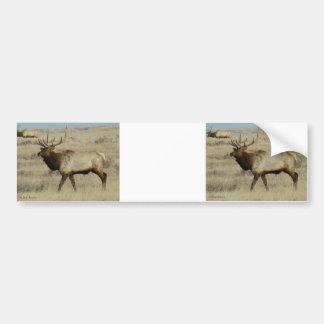 Alces de E0055a Bull Pegatina Para Coche