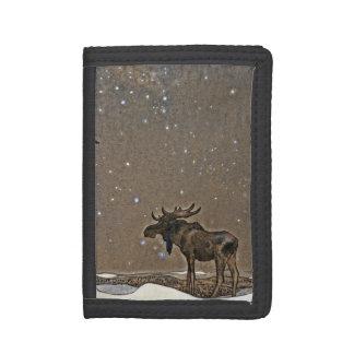 Alces de Holilday en nieve