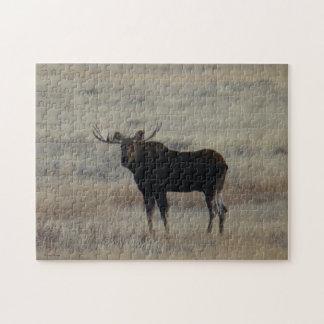 Alces de M0004 Bull Rompecabezas
