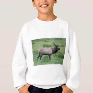 Alces de Oregon Bull Camisas