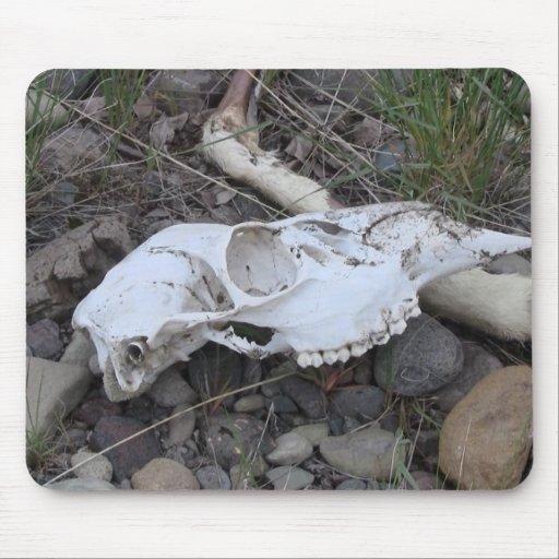 Alces de Pronghorn de los ciervos de los mamíferos Tapetes De Ratones