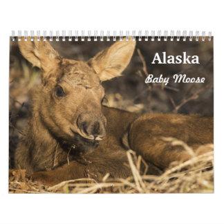 Alces del bebé calendarios
