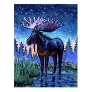 Alces en el amanecer tarjeta postal
