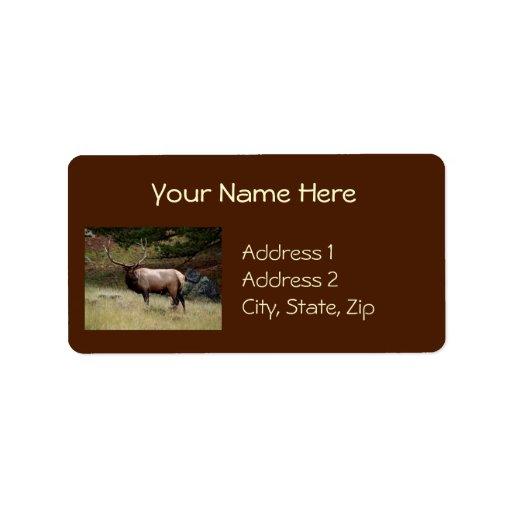 Alces en el salvaje etiqueta de dirección