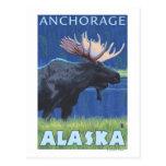 Alces en la noche - Anchorage, Alaska Postales