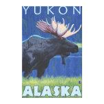 Alces en la noche - el Yukón, Alaska Impresiones En Lona Estiradas