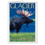 Alces en la noche - Parque Nacional Glacier, TA Felicitacion
